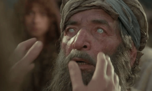 What Can We Learn From Blind Bartimaeus?