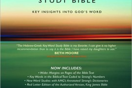 Hebrew-Greek Key Word Study Bible Review