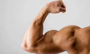 10 Cheap Sources of Protein for Perfect Muscles